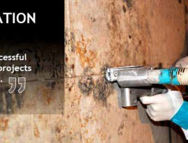 mold_abatement_training_image